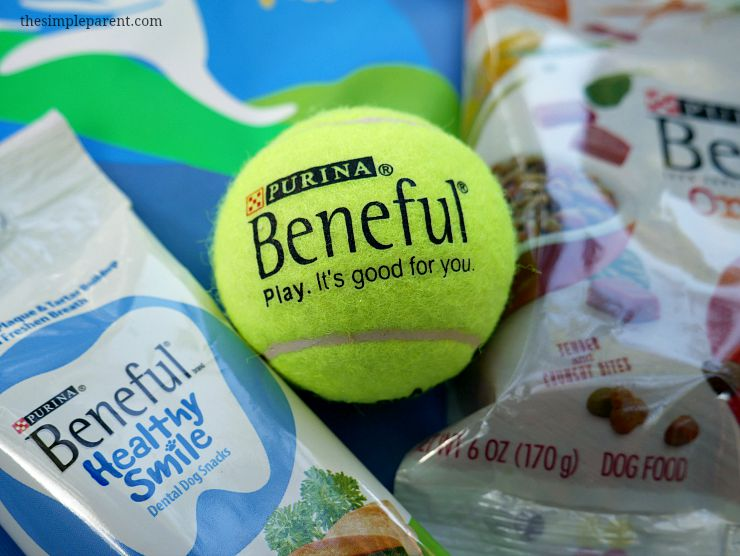 Beneful is celebrating NAtional Dog Week with a great giveaway.