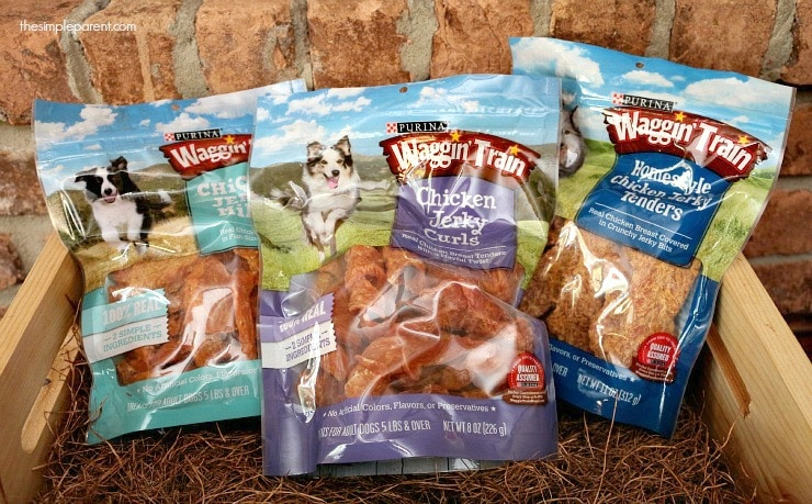 Savor the moments of life with your pet! Share high quality treats with Purina Waggin' Train treats! You'll both savor the special time!