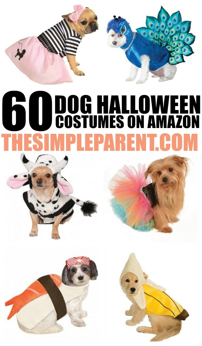 Looking for dog halloween costumes? Check out some of our favorite dog halloween costumes available on Amazon!