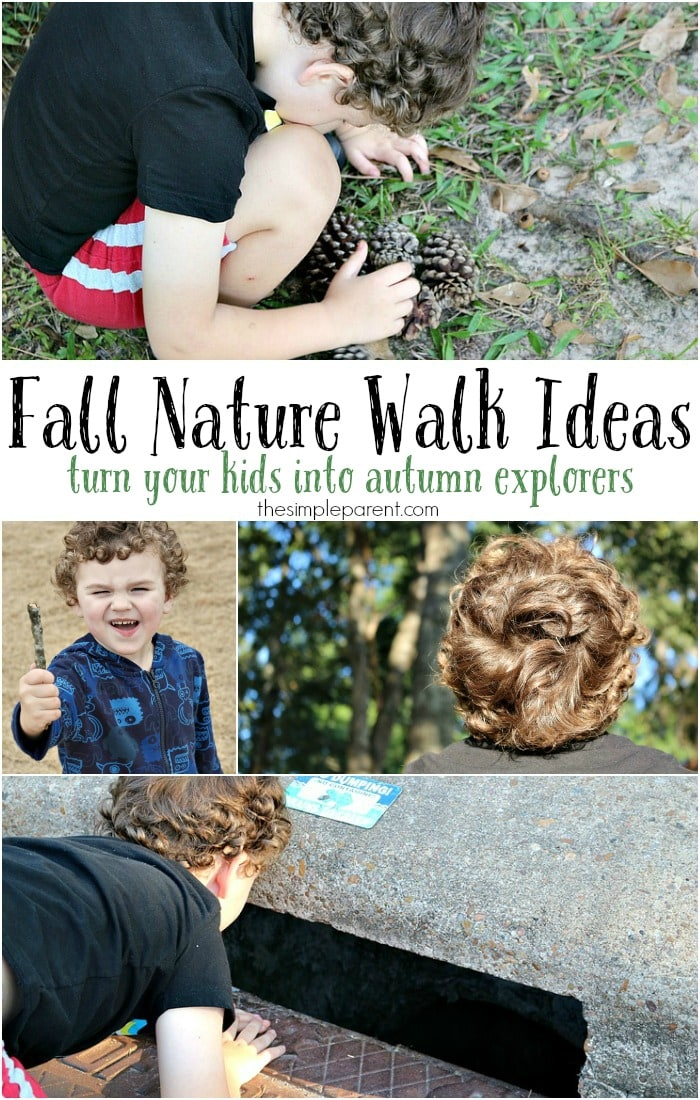 Celebrate the change in the weather by taking a nature walk with your kids! It's a wonderful way for the entire family to get outside and get active! These simple fall nature walk ideas will help you change it up each time too! Fall nature walk ideas can be wonderful learning opportunities too!