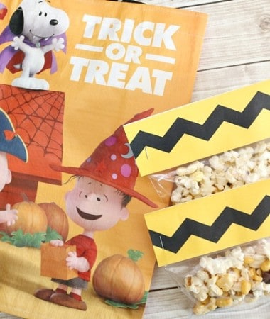Celebrate the classic Peanuts gang with The Peanuts Movie inspired snack mix! It's an easy sweet and salty snack mix! Plus get a free treat bag printable too!