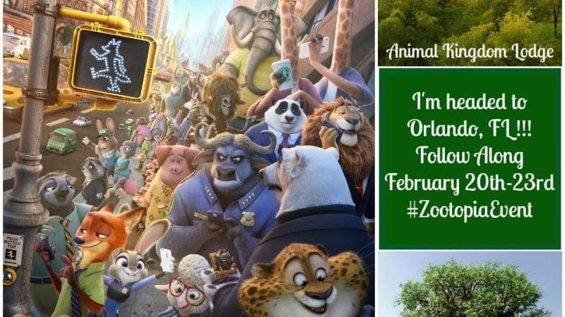 Come with Me to Zootopia!