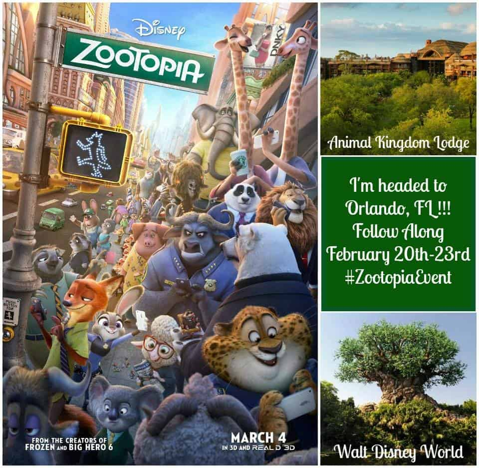 Come to Zootopia with me! Follow the #ZootopiaEvent coverage from Walt Disney World!