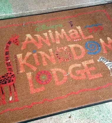Wondering why your family should stay at Animal Kingdom Lodge on your next Disney World vacation? Check out some of the reasons we love it!