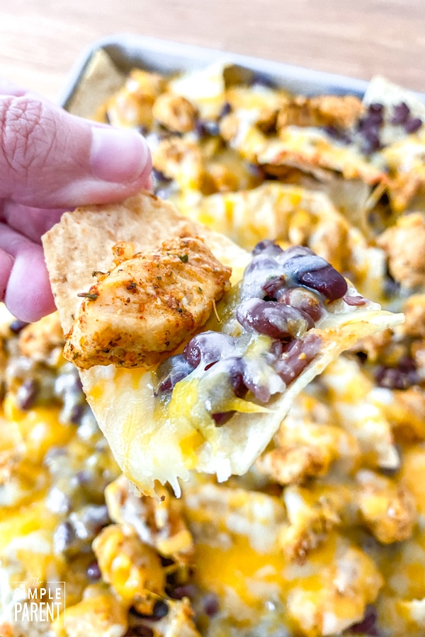 Sheet pan nachos made with chicken and colby jack cheese
