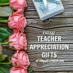 10 Easy Teacher Appreciation Gifts for Any Time