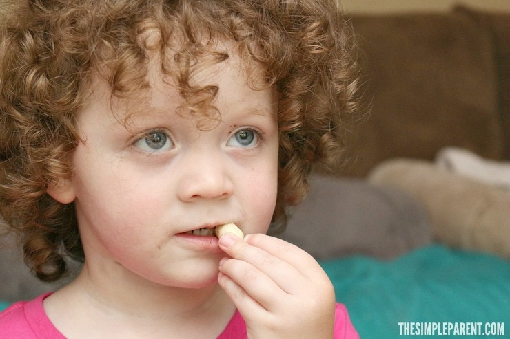Toddler Snacks are made easy with help from Gerber!