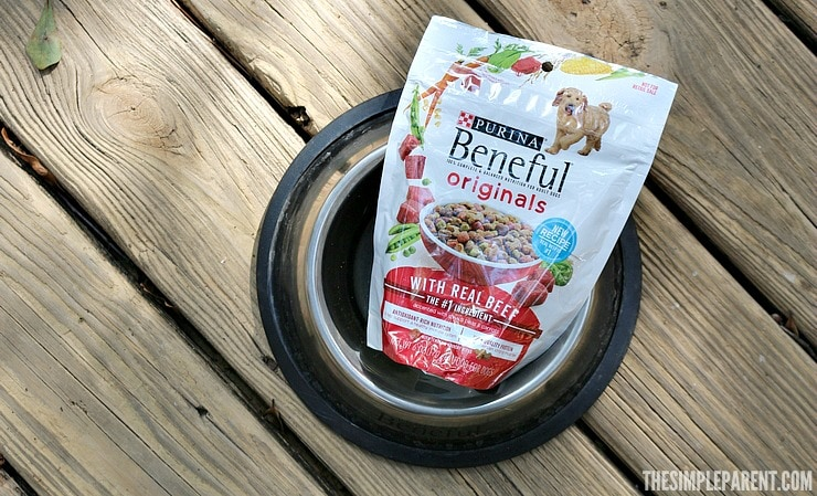 The new Beneful dog food recipe is here! Check out why you & your dog will love it!