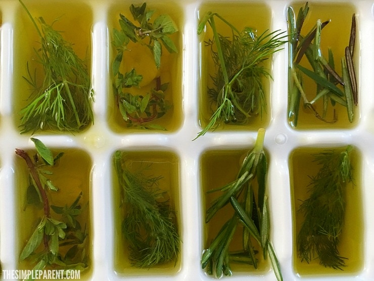 Learn how to freeze herbs in olive oil to make meal prep easier!