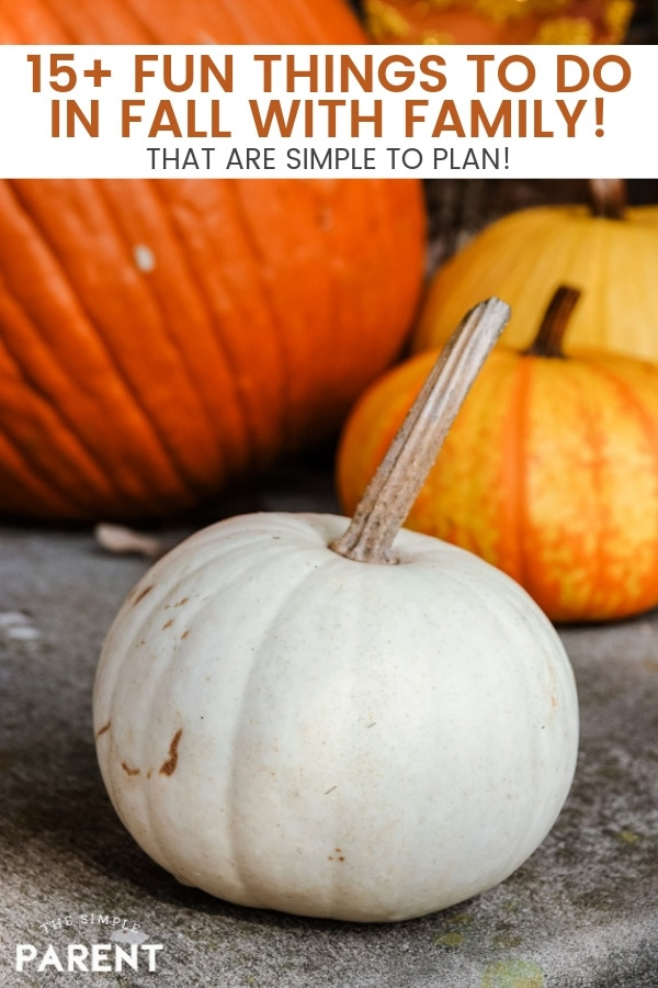 Plan some simple fun things to do in the fall with your family! Start traditions and make memories with these easy ideas!