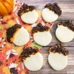 Adorable Acorn Sugar Cookies