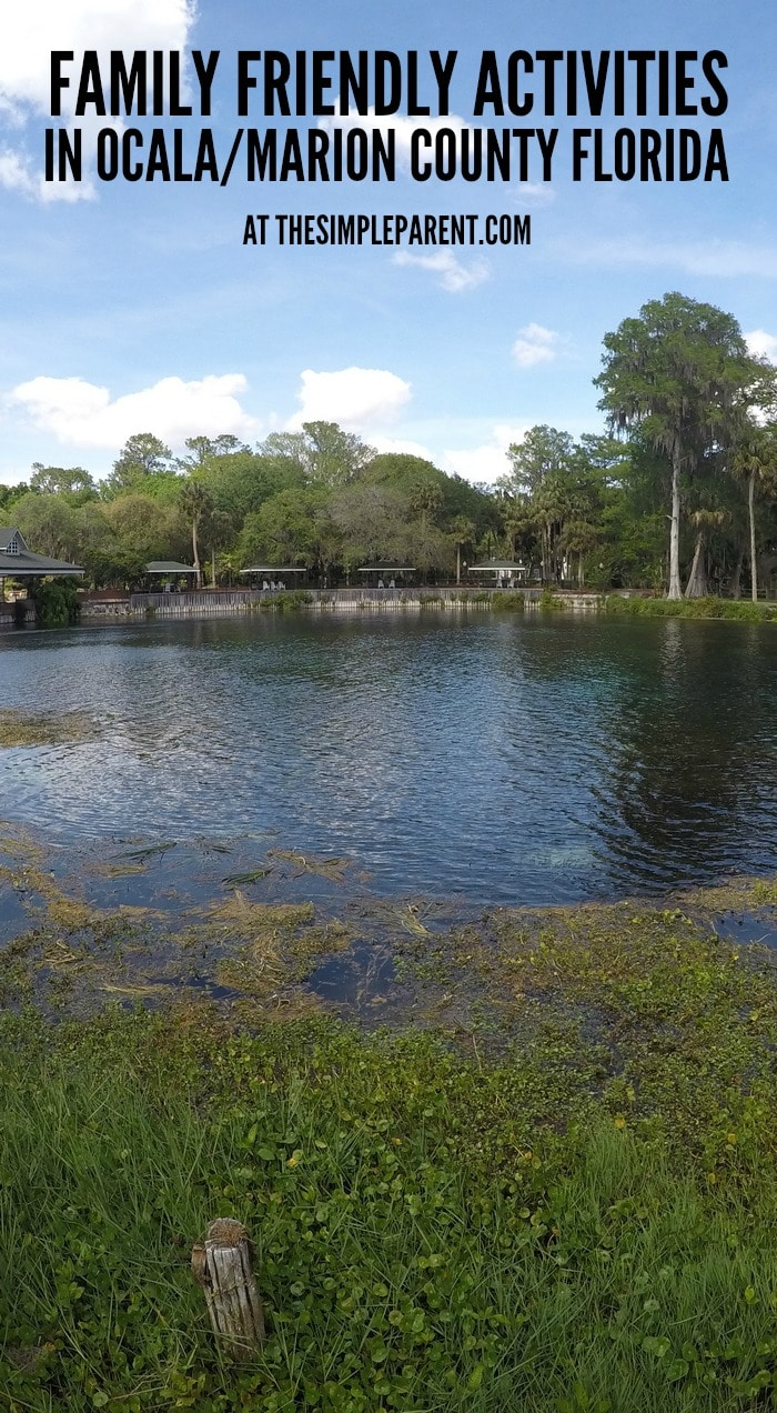 Check out these family-friendly Ocala Marion Country Florida vacation ideas!