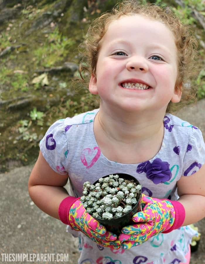 Learn more about the Green Your School Fund from Tom's of Maine & Donor's Choose!