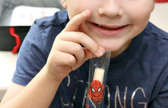 Back to School Lunch Ideas for Picky Eaters (That Won't Stress Mom Out!)