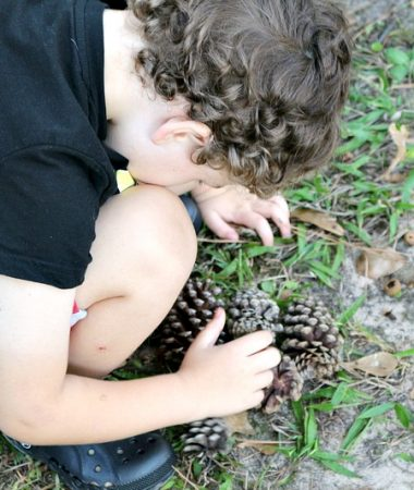 Try these easy and fun nature activities with your family!