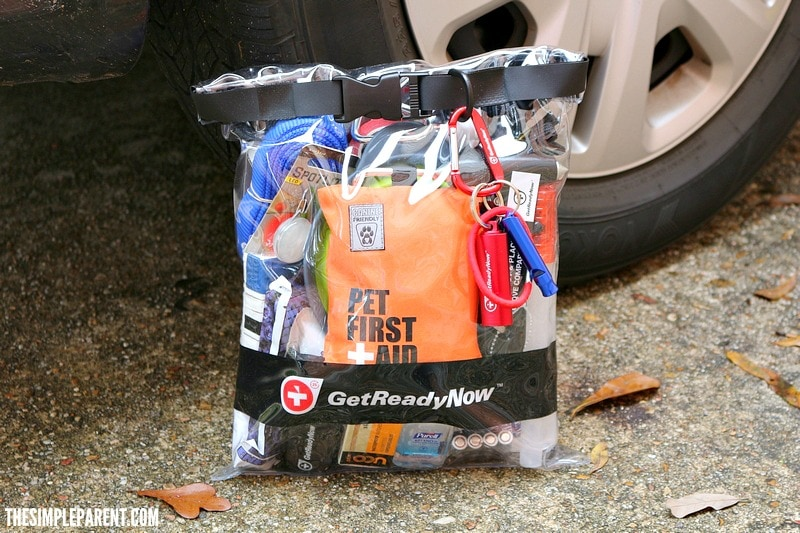 Get prepared with dog car travel acceories like the Get Ready Now kit!