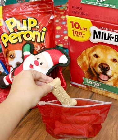 Dog Gift Basket Ideas for the Holidays that Your Pet Is Sure to Love