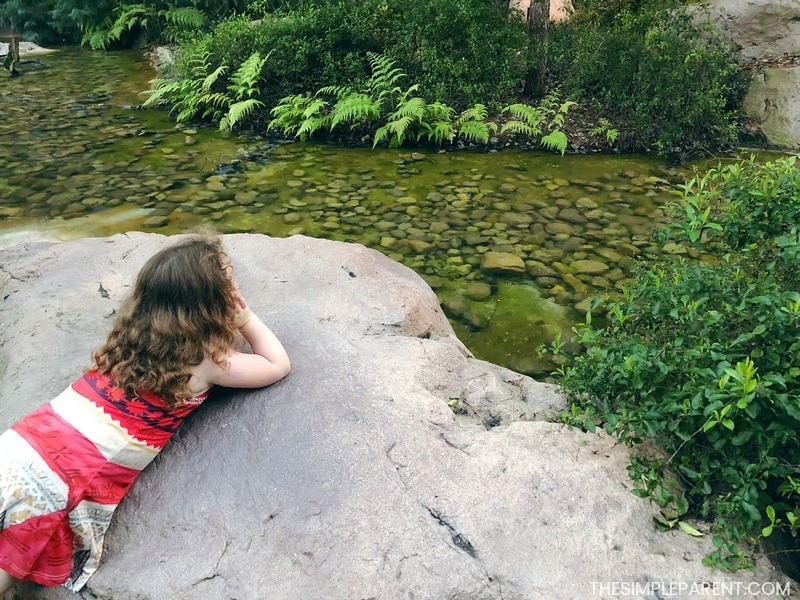 The intellectual development of a 4 year old goes through many phases. Posing on a rock, thinking.