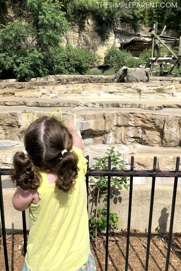 Girl visiting the San Antonio Zoo