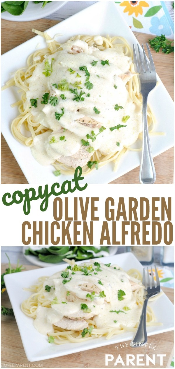 Olive Garden Chicken Alfredo Recipe - Copycat recipes are a great way to enjoy your favorite meals without going out to eat at a restaurant! Enjoy this pasta recipe with your own salad and breadsticks for a great dinner at home!