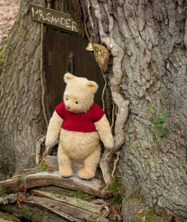Christopher Robin Winnie the Pooh voice in the forest