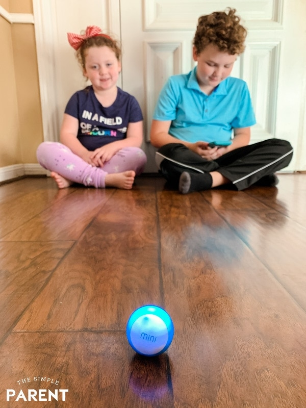 Sphero Mini Review - Toy Robot