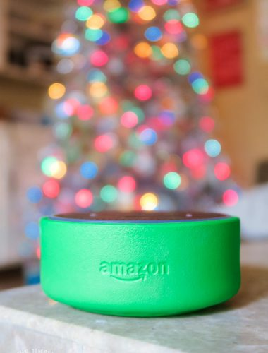 Amazon Echo Dot Kids Edition in green case
