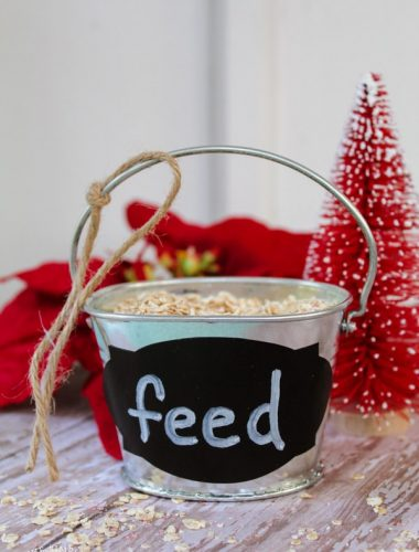 Reindeer Food Poem & Farmhouse Bucket Craft - Start an easy Christmas tradition for kids! Learn how to make reindeer food with this DIY craft farmhouse bucket! Get your FREE printable poem and make some homemade gifts this year!