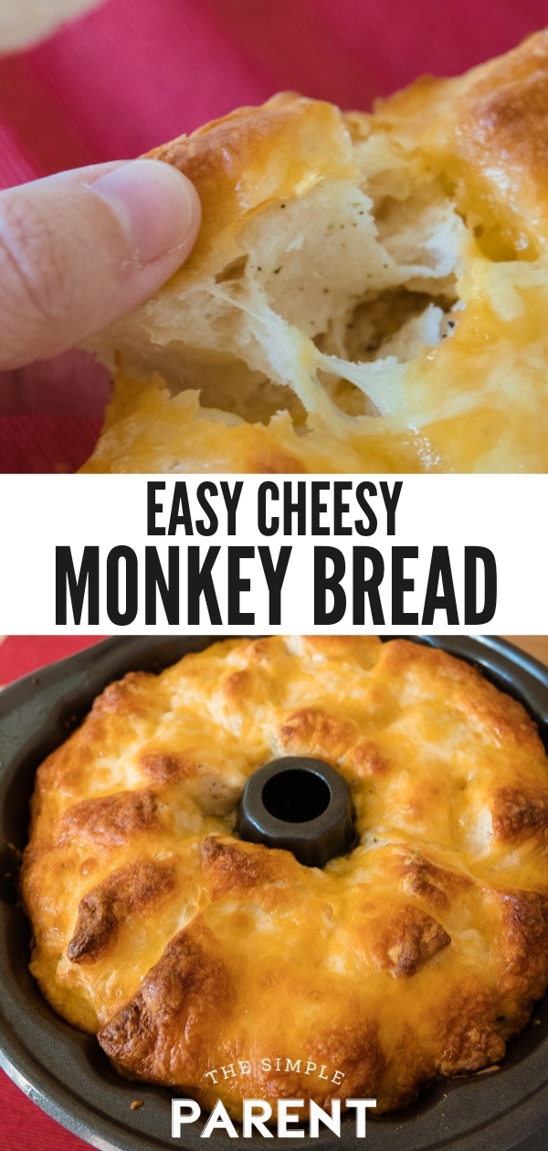 Learn how to make monkey bread with biscuits! This easy savory monkey bread recipe is made with canned biscuits and is super cheesy! Pull apart bread is a great side dish and perfect for parties! Add bacon, choose your own cheese, and enjoy!