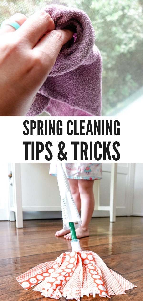 Spring Cleaning Tips and Tricks for Pet Owners