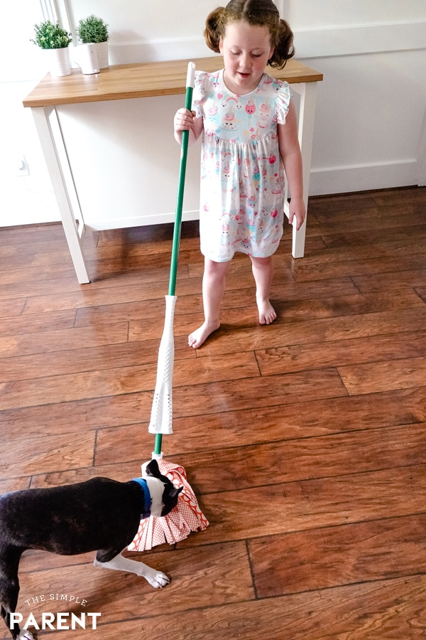 Dog attacking a Libman Wonder Mop