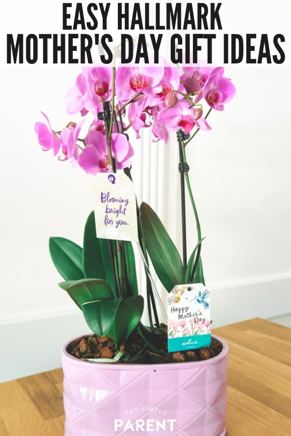 Easy Hallmark Mother's Day Gifts include Hallmark Flowers Orchid and other ideas