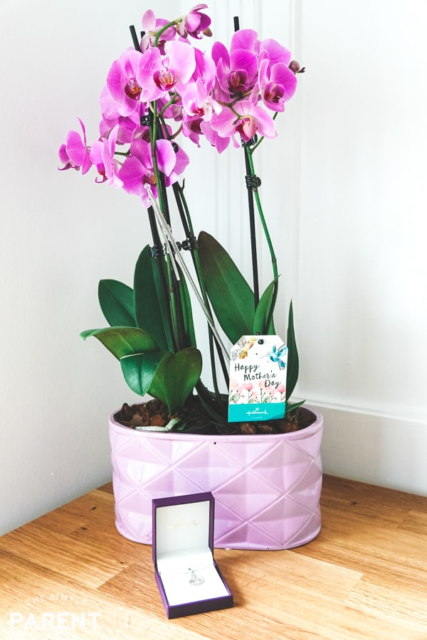 Easy Hallmark Mother's Day Gifts at Amazon.com