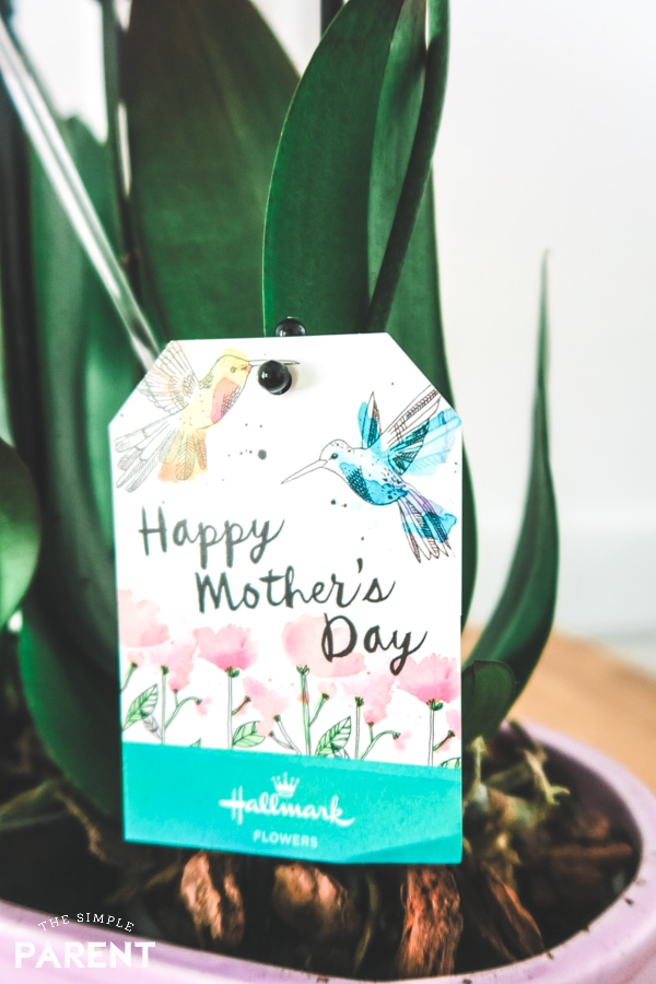 Happy Mother's Day Card on Hallmark Flowers