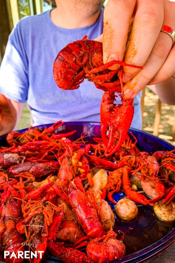 Crawfish at Willie's Grill and Icehouse