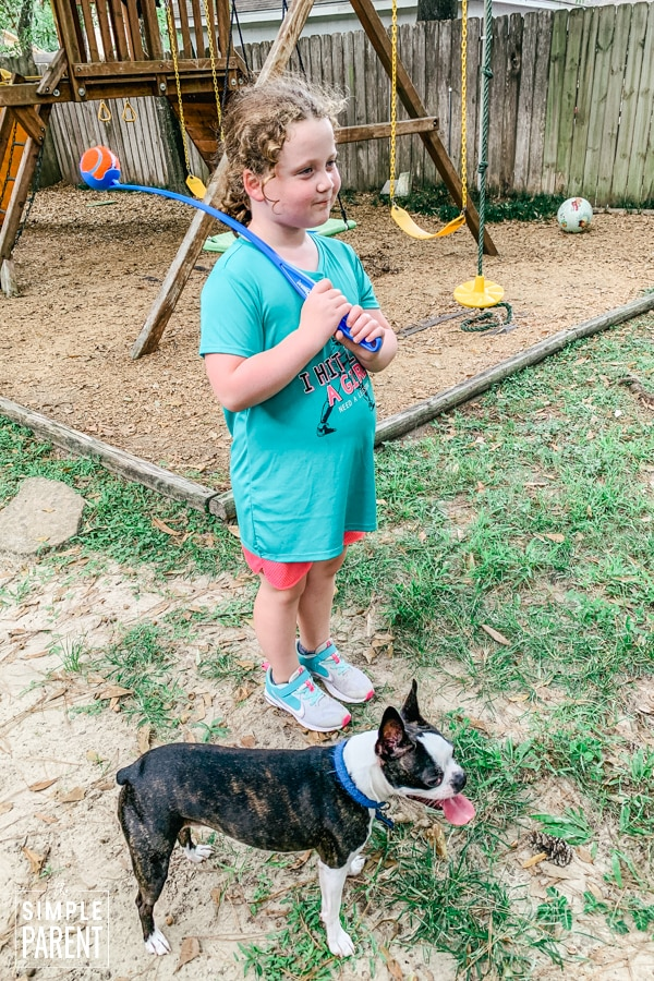 Girl playing with Chuckit! Launcher toy with her Boston Terrier dog