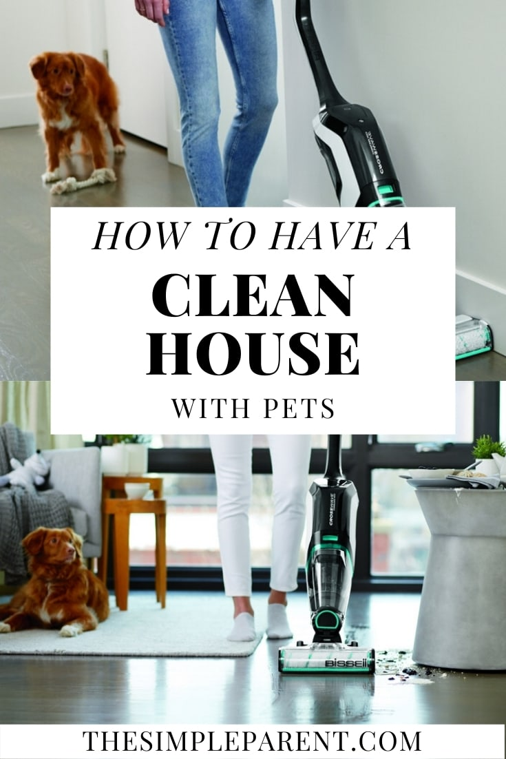 Tips on how to Have a Clean House with Pets