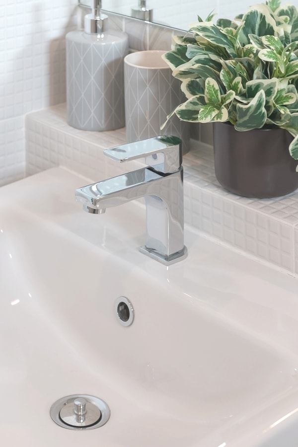 Bathroom sink with silver faucet and green plant
