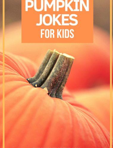 Pumpkin jokes for kids with photo of a pumpkin stem
