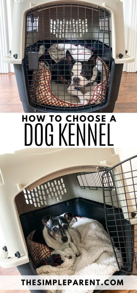 How to Choose a Dog Kennel
